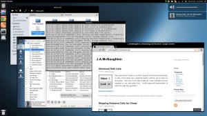 Milieu Bird on Ubuntu 13.04